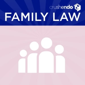 Family-Law-Outlines-Flashcards-Mnemonics